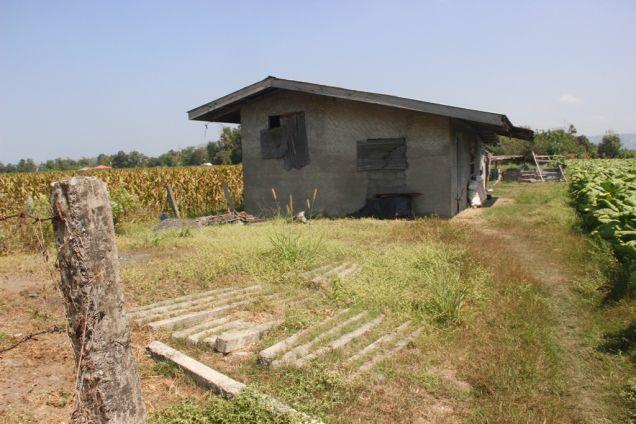 1,224 Sqm. Farm Lot for Sale, Balaoan, La Union, Ilocos - 0