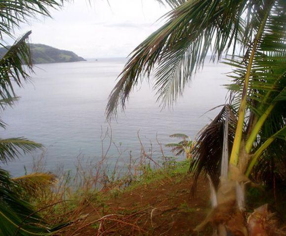 Private Beachfront on Quiet Island - 5