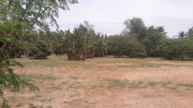 Commercial Lot for Sale, Amvel Business Park, Dr. A. Santos, Sucat, Paranaque - 2