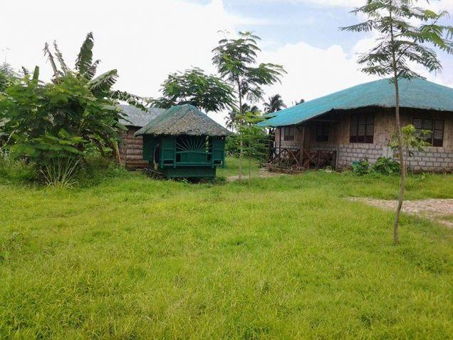 Farm lot with improvement in near Tagaytay city - 8