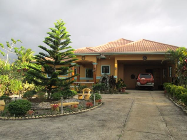 5000 sqm farm lot with rest house near Tagaytay at P15M - 0