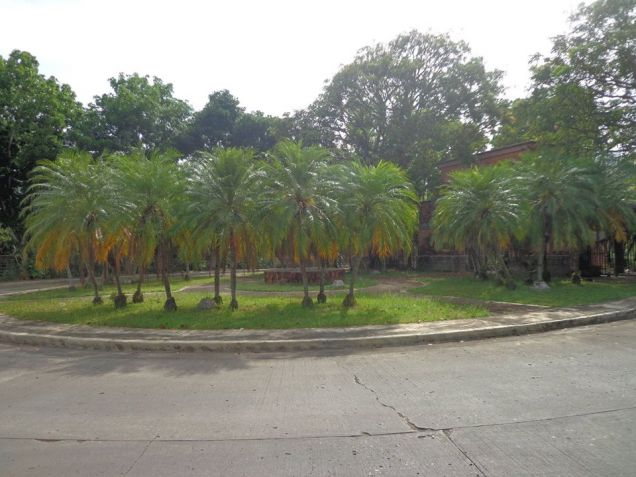 Foreclosed Res. Lot in La Herencia Negrense Subd. Bacolod City - 4