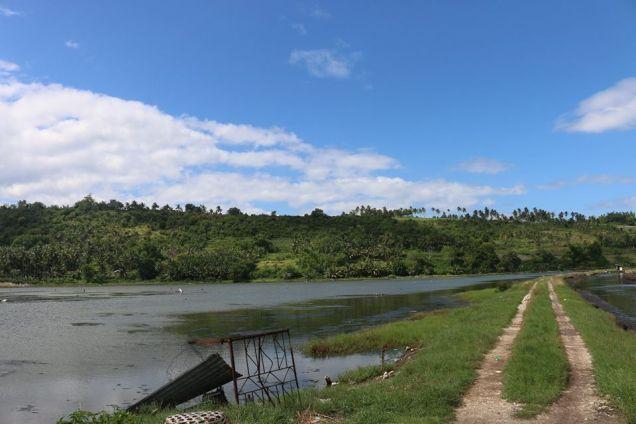 Fish Pond in Badian, Cebu - 4