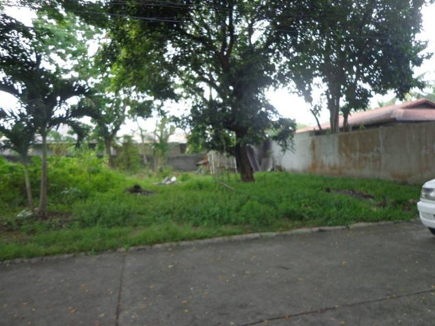 Foreclosed Residential Lot For Sale in Bata Bacolod City - 6