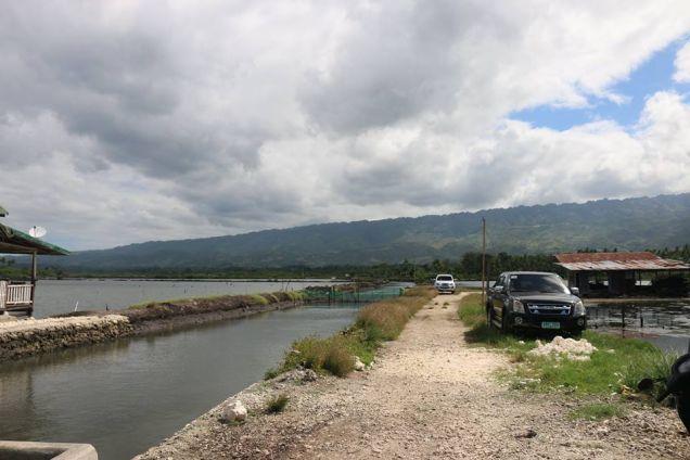 Fish Pond in Badian, Cebu - 9