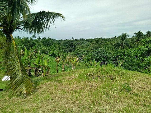 farm lot for sale near Tagaytay 1112sqm at P1,700 per sqm - 5