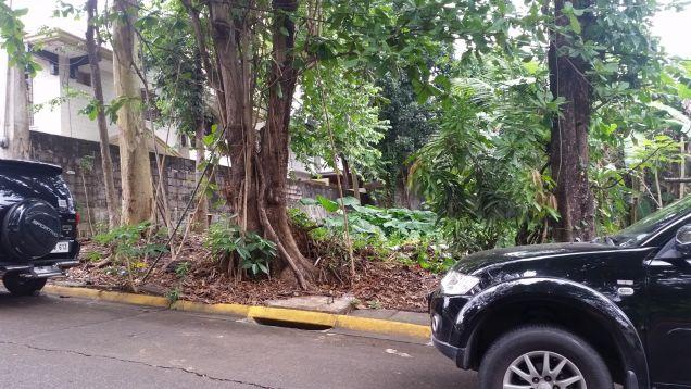 Filinvest 2 Vacant Lot in Batasan Hills, Quezon City - 1