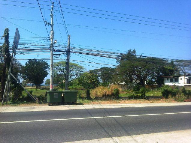 1.2 Hec Beach lot for sale in Paringao Bauang La Union - 2