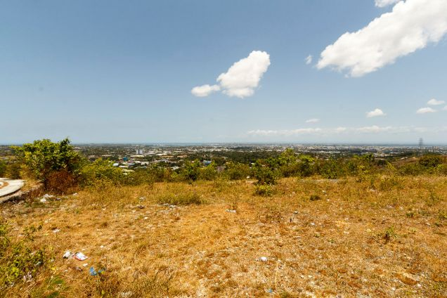 1000 SqM Hilltop Lot for Sale Overlooking Cebu City - 1