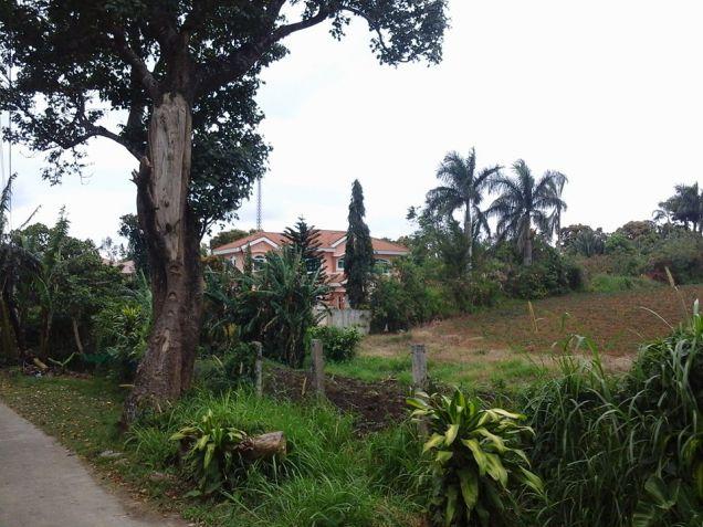 Tagaytay city Residential farmlot in Tagaytay near very near highway - 1