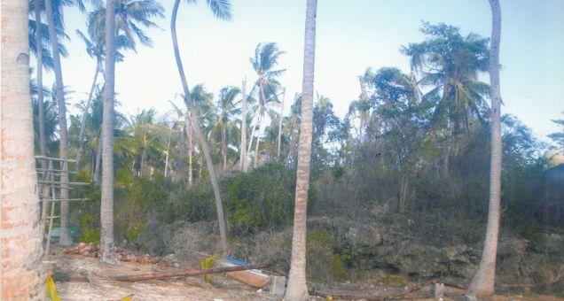 beach lot, candanay sur, siquijor