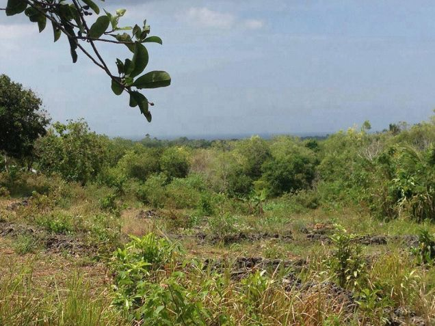 200 sqm Mountain View Residential Lot for Sale at 11,425/month - Tagbilaran - 5