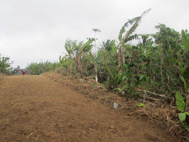 farm lot for sale near Tagaytay 554sqm at P1,600 per sqm - 7
