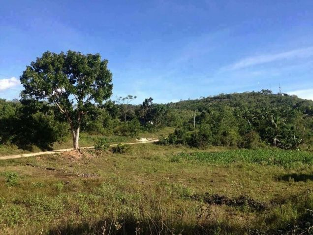 200 sqm Mountain View Residential Lot for Sale at 11,425/month - Tagbilaran - 0