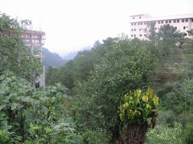 Lot for Sale in Baguio City - 0