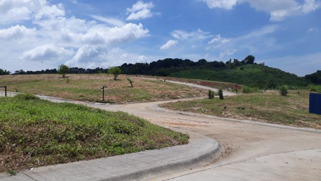 216 sqm Residential Lot for Sale in Amarilyo Crest Havila Taytay Rizal - 7