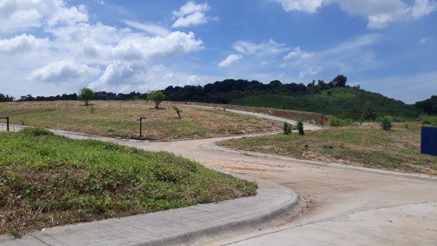 216 sqm Residential Lot for Sale in Amarilyo Crest Havila Taytay Rizal - 8