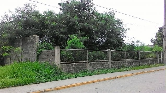Industrial lot for rent or lease in Laguna - 0