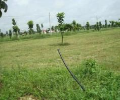 Lot for sale in Dau - 3