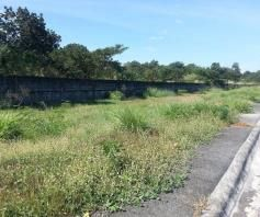 160 sq.m resale lot for sale in Friendship Angeles City - 2