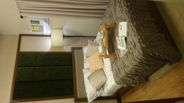 2 bedroom condo for sale near Makati Taguig Alabang ready for occupancy condo DMCI Palm Grove Raya Gardens - 8
