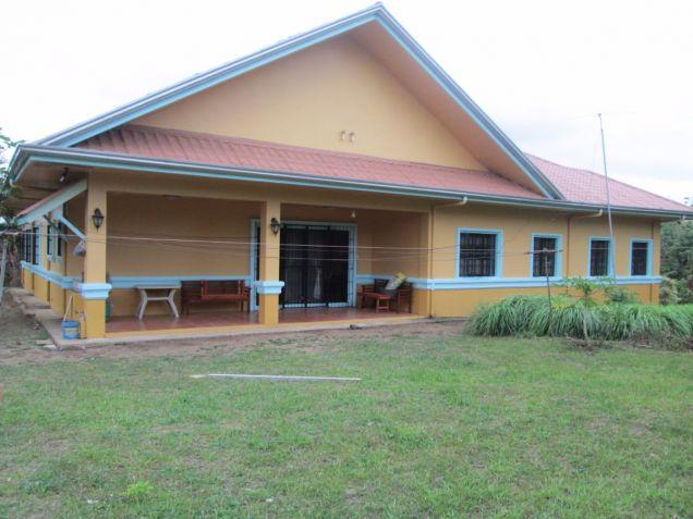 5000 sqm farm lot with rest house near Tagaytay at P15M - 3