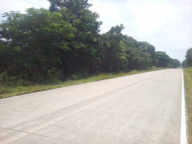 Beach Lot For Sale in Puerto Princesa, Palawan - 1