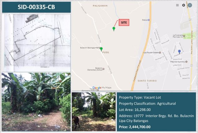 Reference No: SID-00335-CB-0 Agricultural Lot For Sale in Bulacnin Batangas - 0
