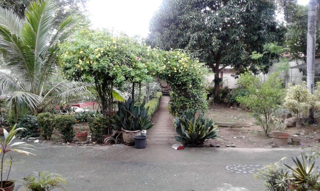 House and Lot for Rent Aliwanay Balamban 2 br 1 maid room 3 toilet and bath - 1