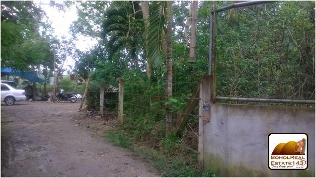 Dao, Tagbilaran City Lot for Sale - 750 sqm at 1.2M - 0