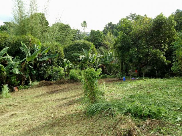 residential lot 100 sqm Near Adventist University of the Philippines - 3