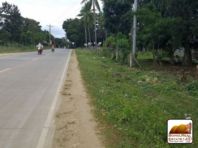 Panglao Island Comm'l Lot for Sale along highway - 0