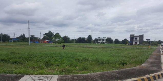 Ciudad Verde Residential Estates, Davao City - 1