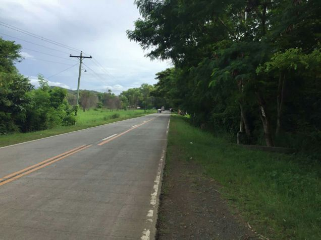 Industrial Lot for Sale, 48551sqm Lot in Puerto Princesa, Eckhart Ang - 3