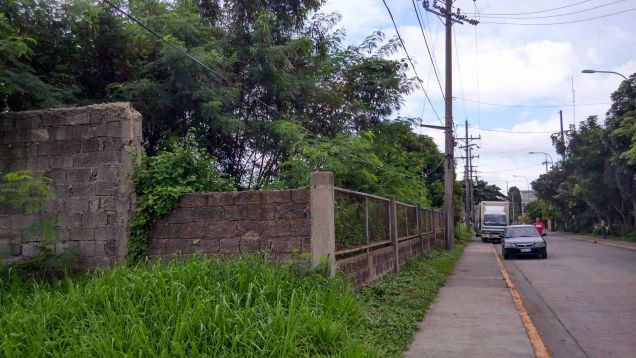 Industrial Lot for Rent, 3827sqm Lot in Laguna, LIIP - 0