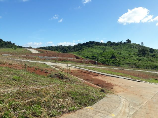 216 sqm Residential Lot for Sale in Amarilyo Crest Havila Taytay Rizal - 2