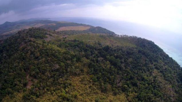 Unique Pristine Tropical Paradise For Sale Near Coron - 4