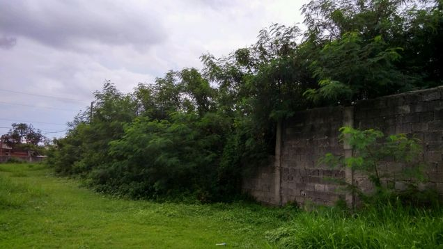 Industrial Lot for Rent, 3827sqm Lot in Laguna, LIIP - 1