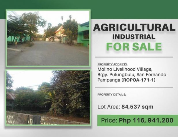 Agricultural-Industrial For Sale in San Fernando , Pampanga - 3