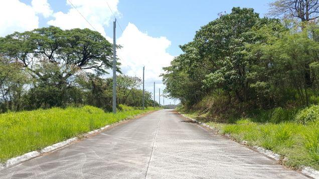 772 sqm Farm Lot for sale Havila Angono Rizal near Antipolo and Marikina City - 9