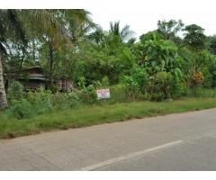 Commercial Lot  Along  City  Road Of Island Garden City Of Samal - 1