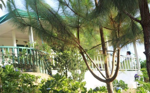 For Rent Resort House with Fabulous Gardens in Busay Cebu City - 1