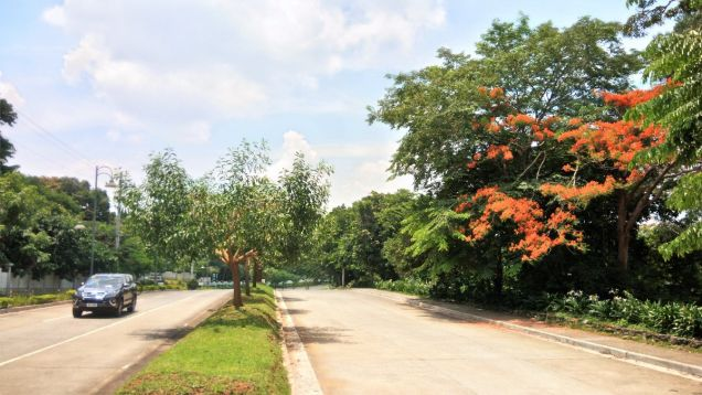 Lot for sale in the Glades Timberland Heights San Mateo Rizal near Quezon City - 1