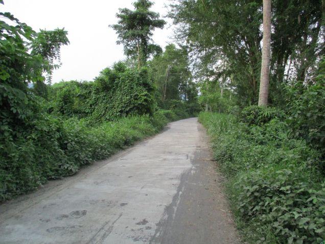 Farm lot in Barangay San Gregorio, Laurel, Batangas, vacant lot Batangas - 3