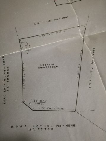 Vacant Lot for Sale in San Jose Village, Alabang, Muntinlupa - 3