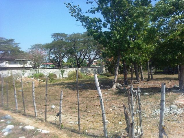 1.2 Hec Beach lot for sale in Paringao Bauang La Union - 8