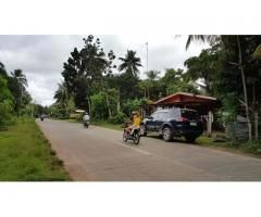Commercial Lot  Along  City  Road Of Island Garden City Of Samal - 2