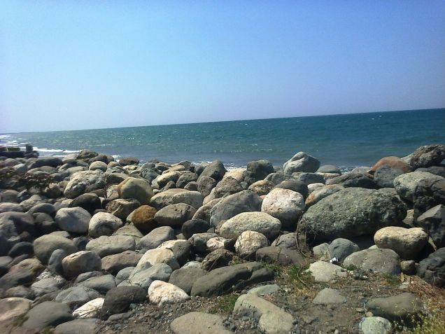 1.2 Hec Beach lot for sale in Paringao Bauang La Union - 7