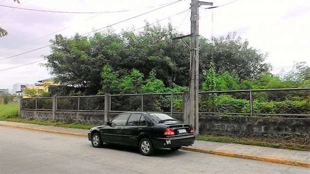 Industrial lot for rent or lease in Laguna - 4