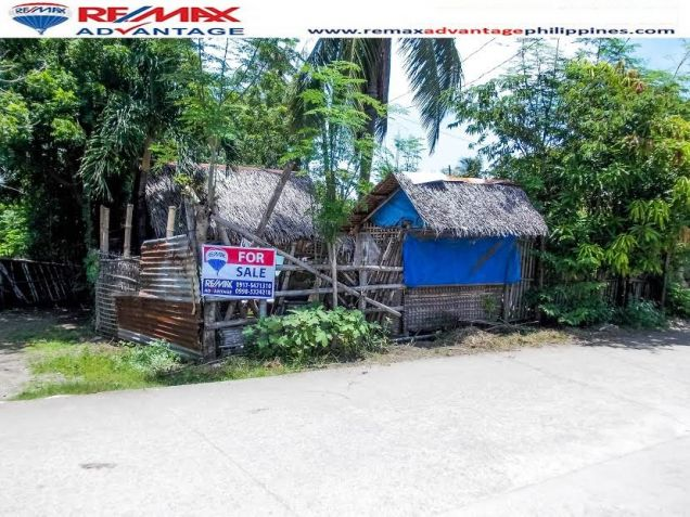 Lot for Sale in Alegre Oton, Iloilo - 0